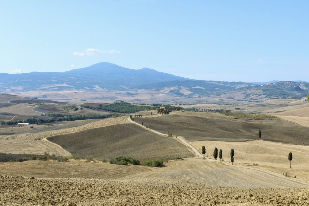 The fields of the Gladiator